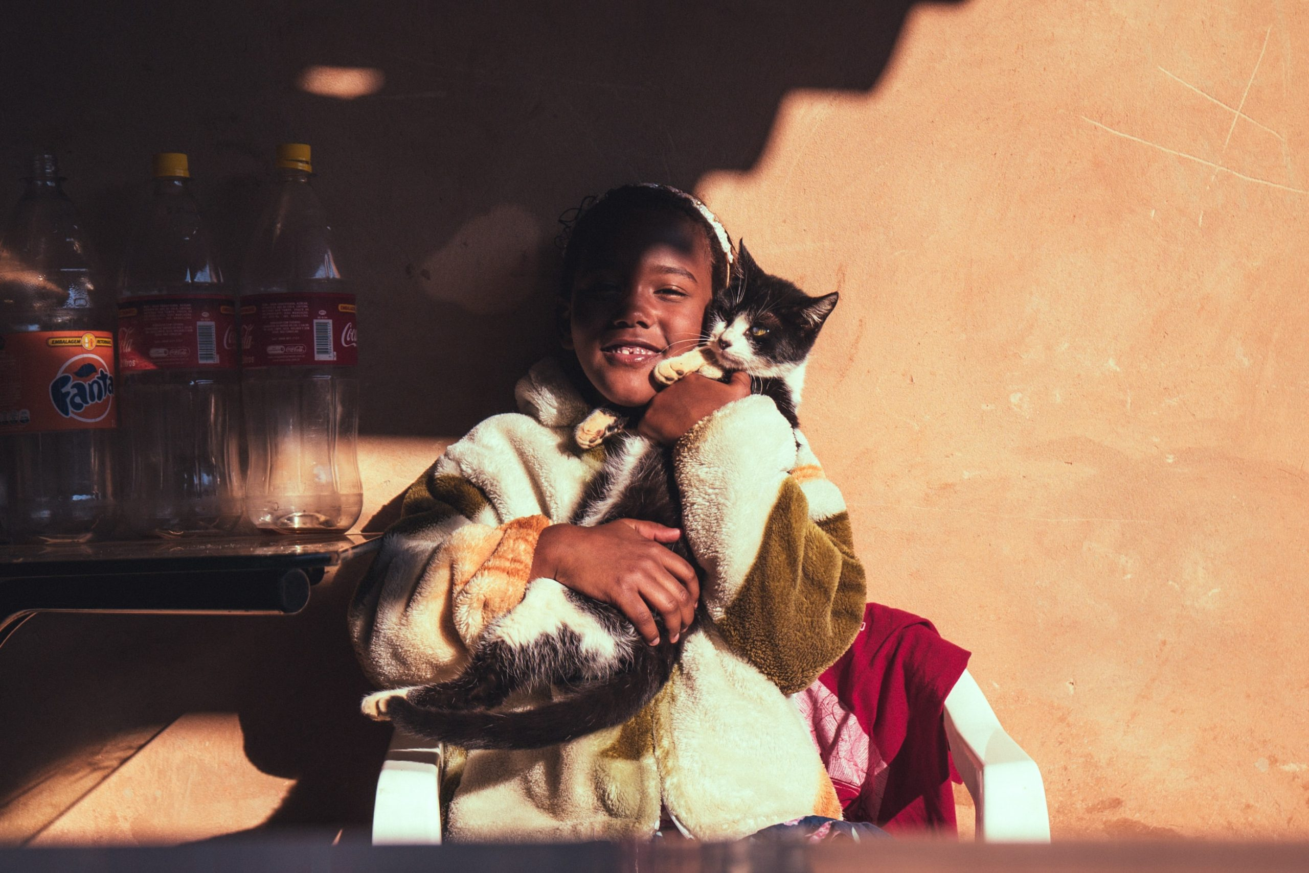 The importance of pets in foster care